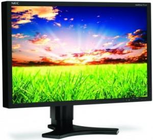 NEC MultiSync P221W-600$